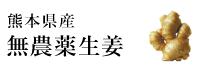 熊本県産無農薬生姜