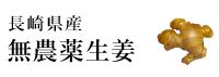 長崎県産無農薬生姜