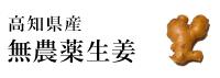 高知県産無農薬生姜