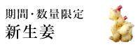 熊本県産無農薬新生姜