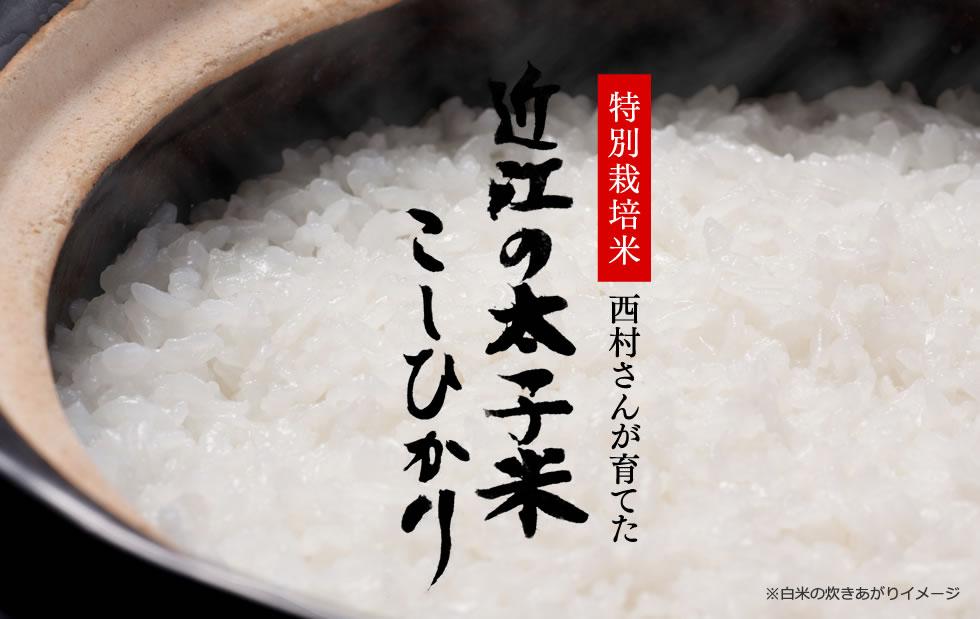 特別栽培米西村さんが育てた近江の太子米 こしひかり