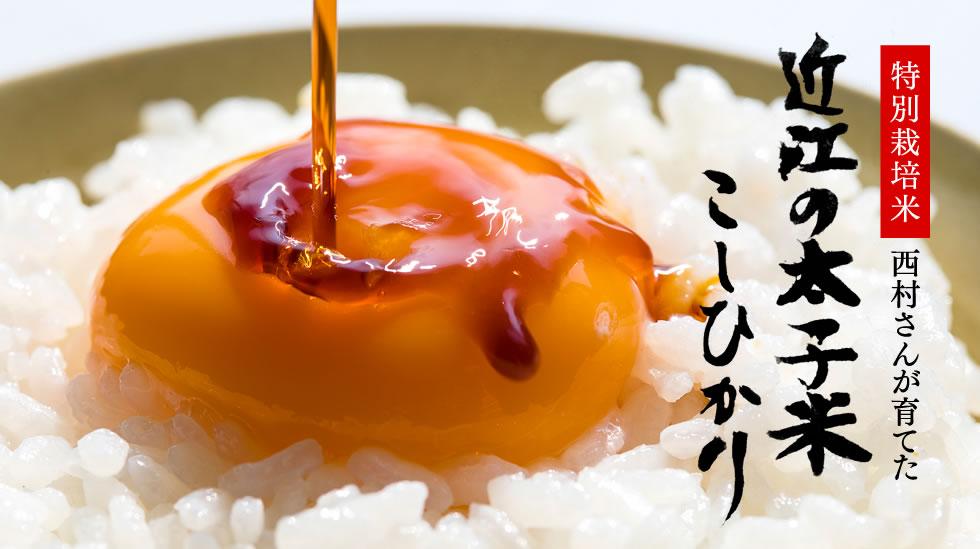 特別栽培米 西村さんが育てた 近江の太子米 こしひかり