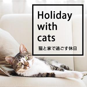 猫と家で過ごす休日