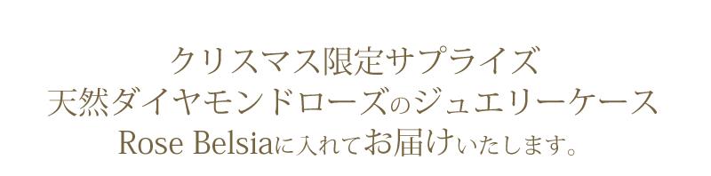 『天然ダイヤモンドローズ×ステンレスクロウペンダント』-5