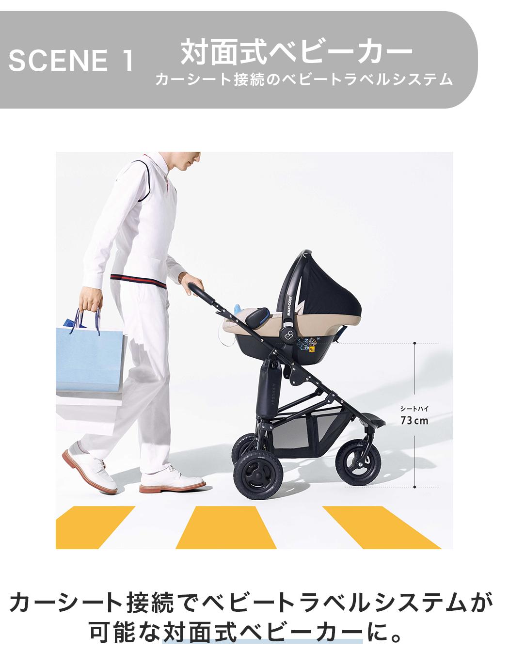 エアバギーのフレーム単品販売の商品ページ2