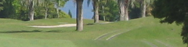 ゴルフバカ一代