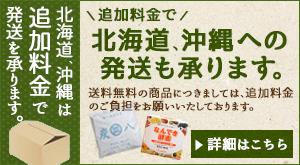 北海道、沖縄は追加料金で