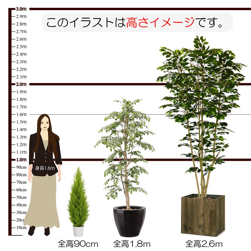 人工樹木高さイメージ