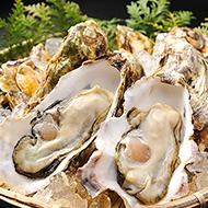殻付き牡蠣 10個