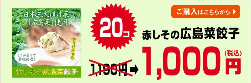 広島菜餃子20個入り
