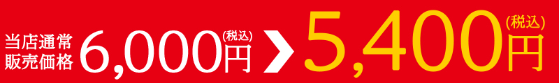 通常価格6,000円(税込)が楽天スーパーSALE限定5,400円(税込)!!