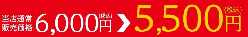 通常価格6,000円(税込)がクーポン利用で5,500円(税込)!!