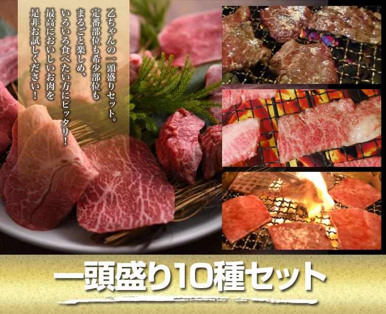 一頭盛り10種セット特別価格5,000円(税別)