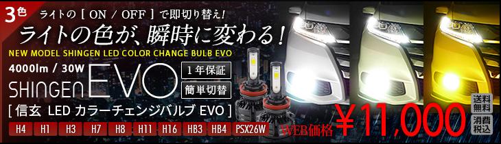 LED カラーチェンジバルブEVO