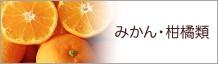 みかん・柑橘類