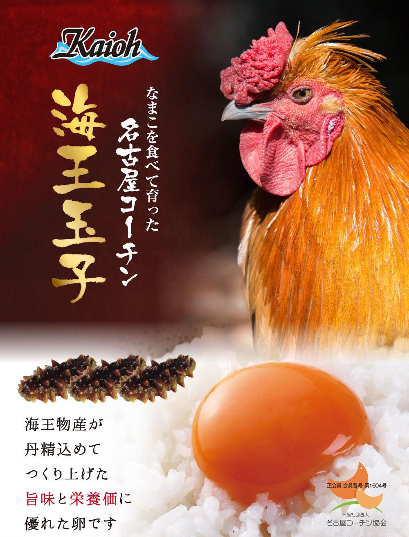 【送料無料】海王玉子(カイオウタマゴ)名古屋コーチン 卵 30個入り 高級卵/玉子/たまご/贈答卵/ご家庭卵 ブランド卵/鶏卵/ ギフト