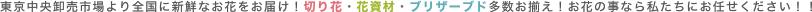東京中央卸売市場より全国に新鮮なお花をお届け!切り花・花資材・ブリザーブド多数お揃え!お花の事なら私たちにお任せください!!
