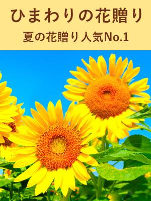 ひまわりの花贈り