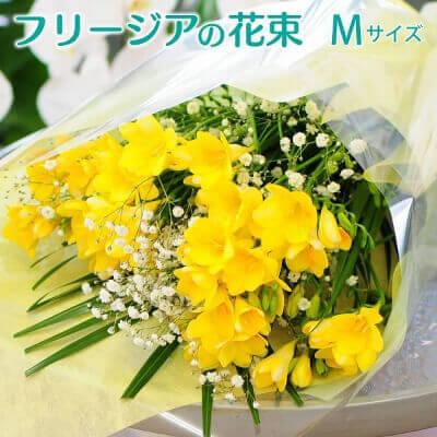 フリージアの花束 M~3L