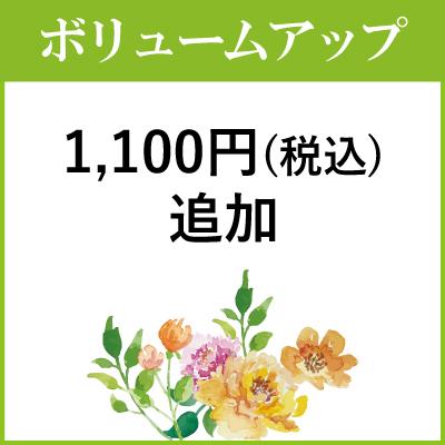 ボリュームアップ1000