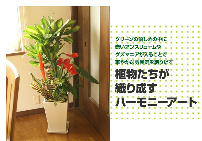 yu_02.jpg