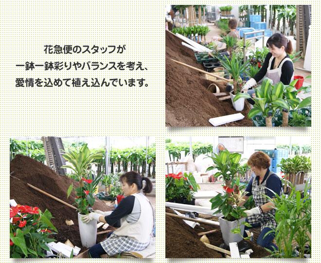 yu_06.jpg