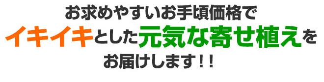 yu_10.jpg