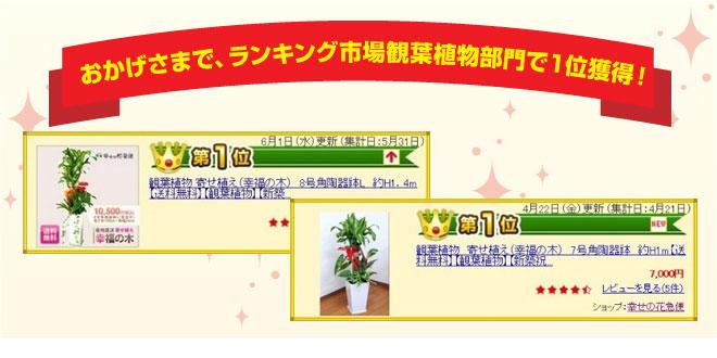 yu_14.jpg