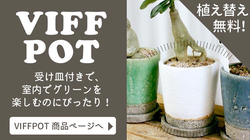 VIFFPOT紹介ページへ