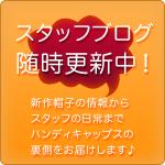 スタッフブログ随時更新中!