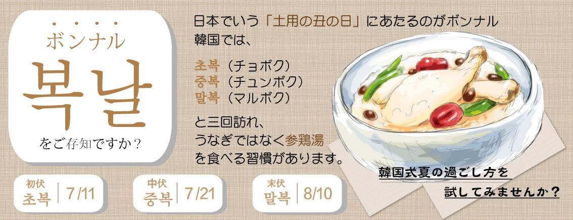 【ソウル市場の自社製】業務用参鶏湯3個セット★☆数量限定100個☆ 950g ※一度のご注文につき1点購入可能です