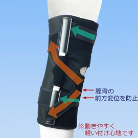 エクスエイドニー前十字靭帯損傷外側