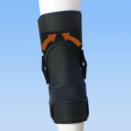 エクスエイドニー前十字靭帯損傷後ろ