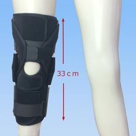 エクスエイドニー後十字靭帯損傷前