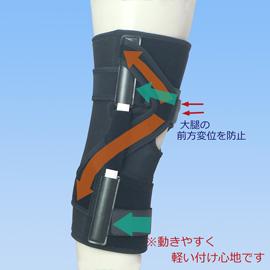 エクスエイドニー後十字靭帯損傷外側