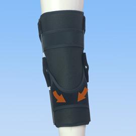 エクスエイドニー後十字靭帯損傷後ろ