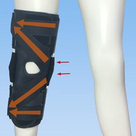 エクスエイドニー内側側副靭帯・外側側副靭帯損傷前
