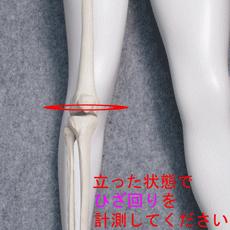 膝サポーターの測り方