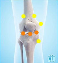 膝の前側の痛み(内側側副靭帯,半月板,膝蓋靭帯)