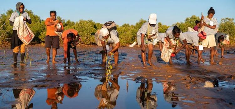 ドイツ発のインナーウエアブランド VATTER(ヴァッター)