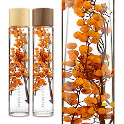 ハーバリウム(浮游花/フユカ)ペッパーベリー、プレミアムタイプ、オレンジ