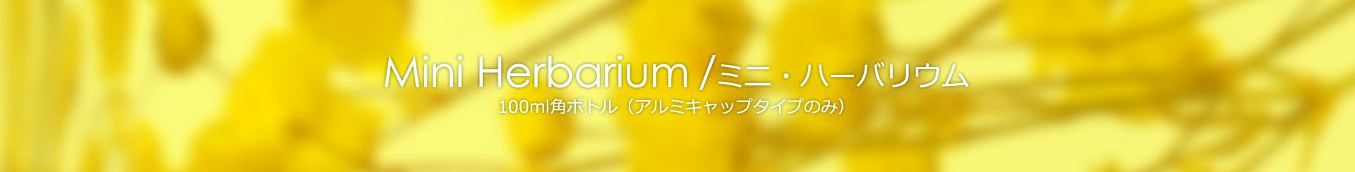 ミニ・ハーバリウム