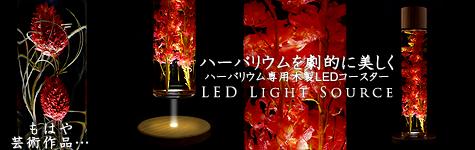 ハーバリウム専用LEDコースター
