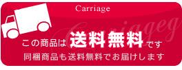 送料無料 (沖縄1000円 九州、北海道は250円 他の商品と同梱可)