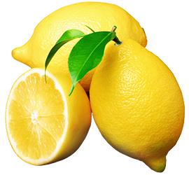 これ以上のレモンはない。自信をもって選びました。