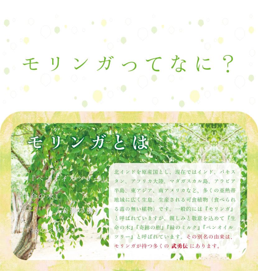 モリンガとは、奇跡の樹、生命の木、緑のミルク、ベンオイルツリー