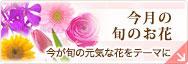 旬の花特集