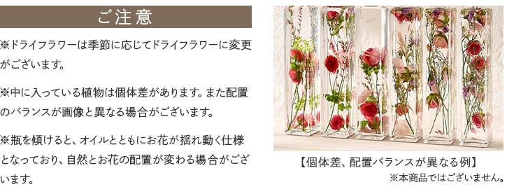 中に入っている植物は個体差があります。また配置のバランスが画像と異なる場合がございます。