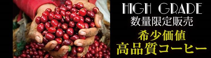 特集情報【数量限定高級コーヒー豆】