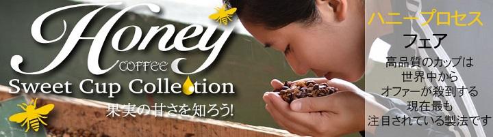 ヒロコーヒーハニープロセス【フェア】